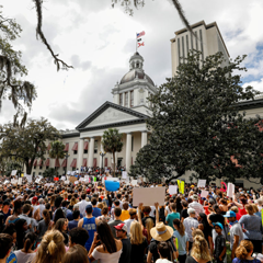Protestors pictured rallying outside the Capitol urging Florida lawmakers to reform gun laws on February 21, 2018. File photo by REUTERS/Colin Hackley