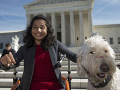 A Girl, Her Dog and the Supreme Court