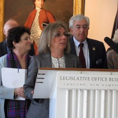 New Hampshire House Speaker Terie Norelli Not Seeking Re-election