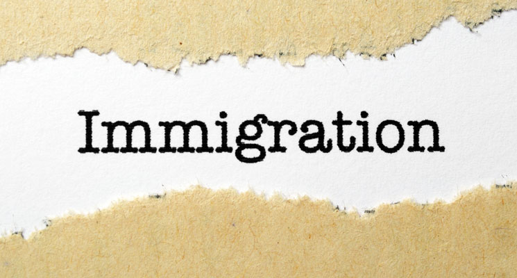 imgNCSL Immigration Resources