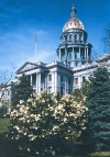 picture of Colorado Capitol building