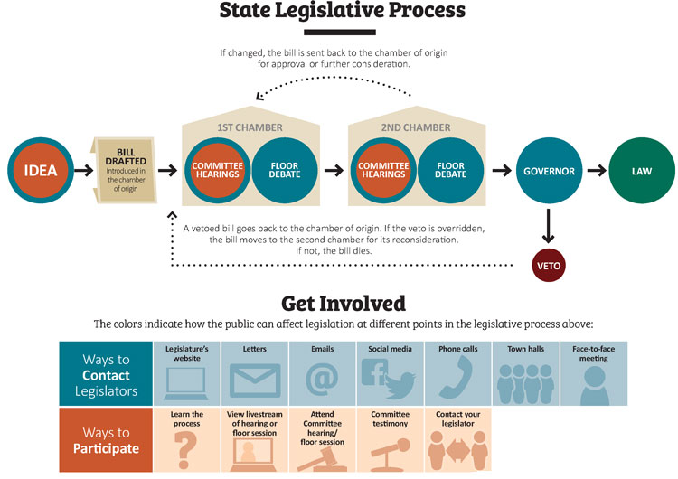 state legislators  who they are and how to work with them
