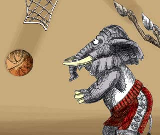Basketball illustration