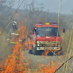 Firefighters with grass fire