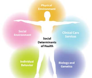 Illustration of influences on health