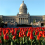 Kentucky Capitol building with red tulips against a blue sky.