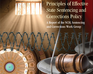 "prison system effective Prison management of terrorism-related offenders: is separation effective dr julia rushchenko ""it is imperative that as terrorism evolves our criminal justice system transforms."