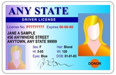 voter with drivers license