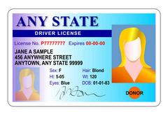 Graphic Illustration of a mock driver's license.