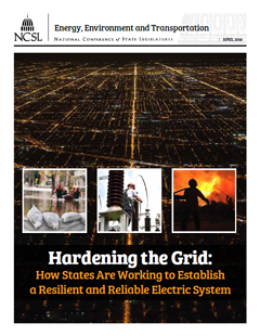 Cover of the report Hardening the Grid