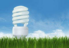 Energy saving light bulb against blue sky and green grass.