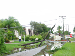 A street with downed power lines after a storm.
