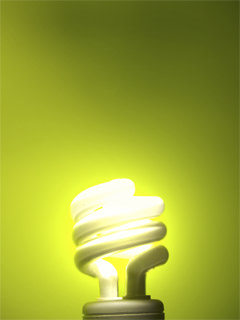 In 2007 Congress Ped The Bi P Energy Independence And Security Act Eisa Which Included Higher Efficiency Standards For Light Bulbs