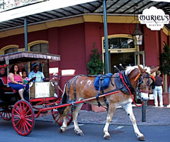 A horse-drawn carriage in New Orleans.