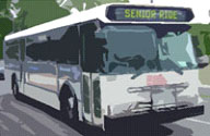 Bus for seniors