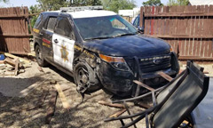 A New Mexico sheriff's office vehicle that crashed into a fence