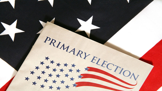primary elections voting