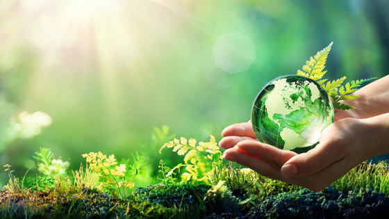 Hands holding a globe with sunshine and plants in the background.